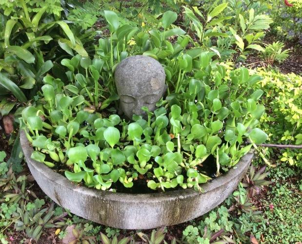 Marie Nui GardenRarotonga